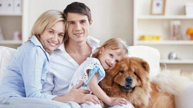 Wills & Trusts dog-young-family Direct Wills Ealing